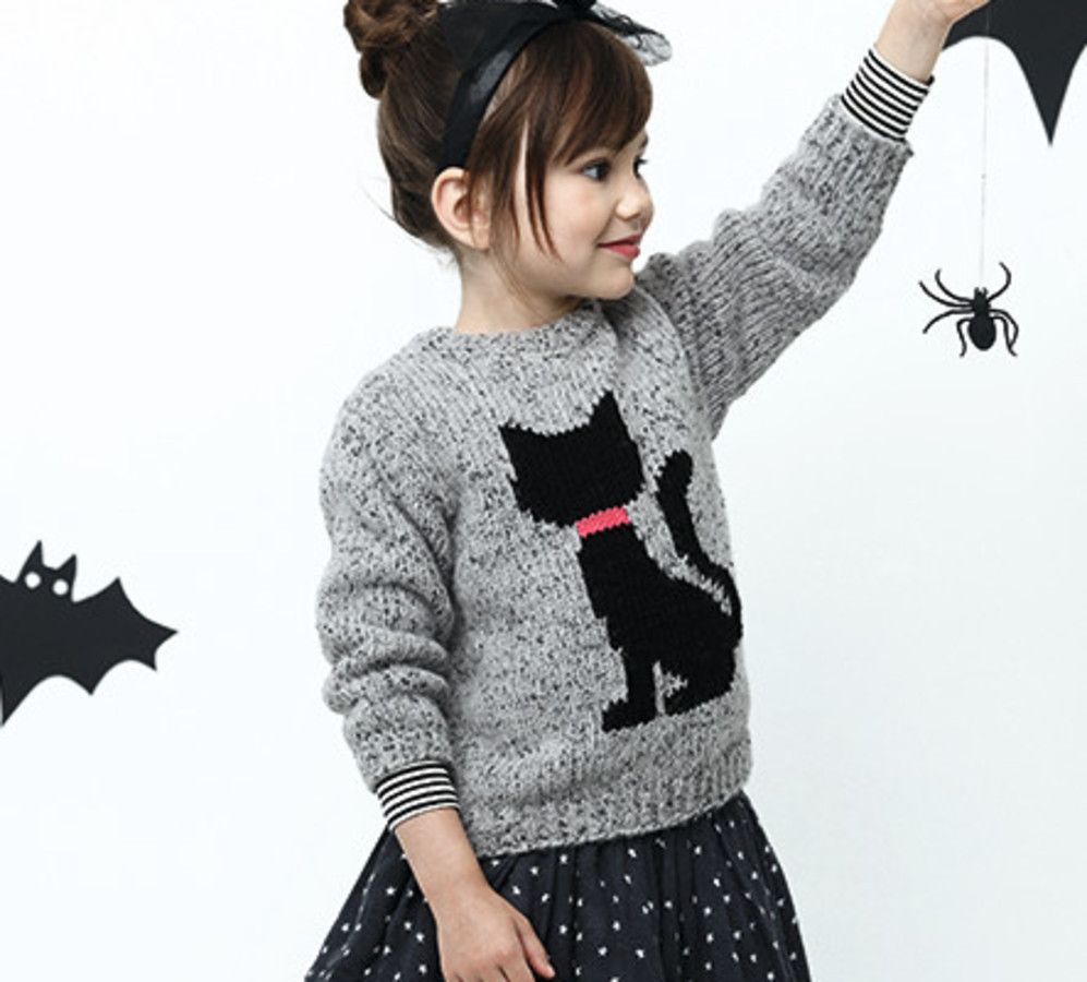 Tricot pull motif chat